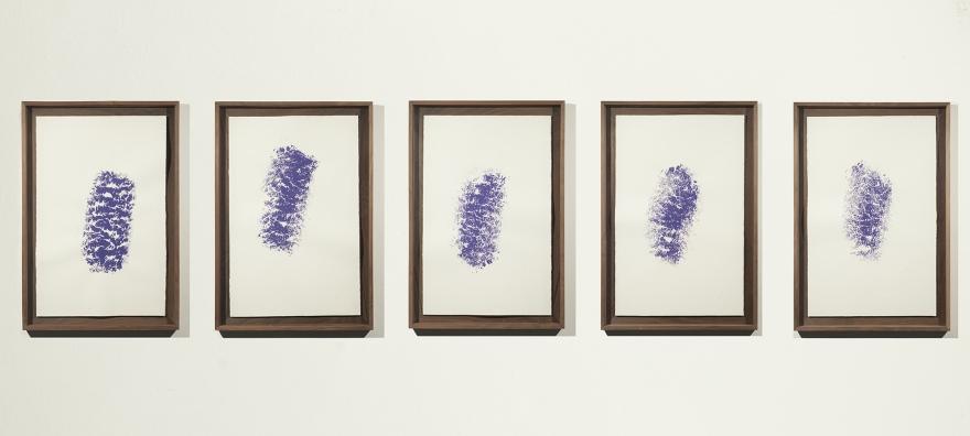 Lana (manchas violetas) de Rodrigo González Castellanos