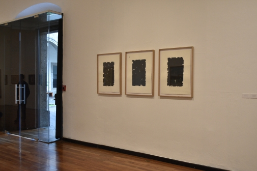 Exposición Después del Jardín, obra de Rodrigo González Castellanos