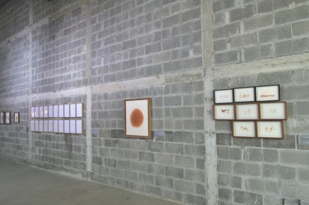 Vista de la exposición Transitante 2.0 en Vía Cordillera Monterrey