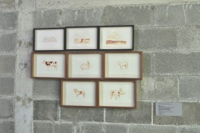 Vista de las obras de Rodrigo González Castellanos en Transitante 2.0 en Vía Cordilleraen Monterrey